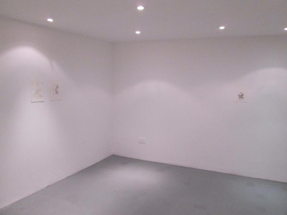 cross gallery dublin, ireland, brian Fay